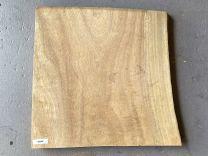 Timber Slab - Queensland Maple #QMA5 - 330 x 330 x 22mm