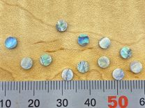 Dot Inlays - Set of 12 - Paua Abalone 4mm