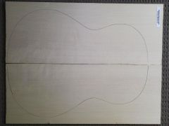 German Spruce Classical Guitar Top #29 - Bearclaw AAAA Grade